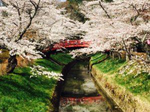 福祉車両でデート、旅行 福島県須賀川市翠ヶ丘公園