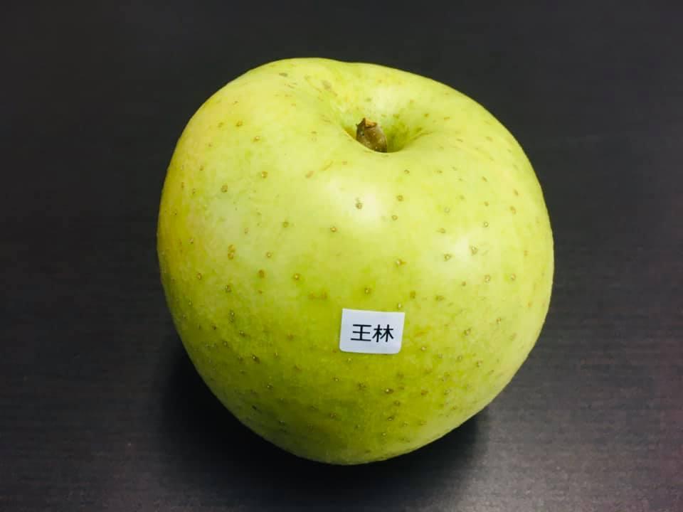 福祉車両 福島県 リンゴ ④